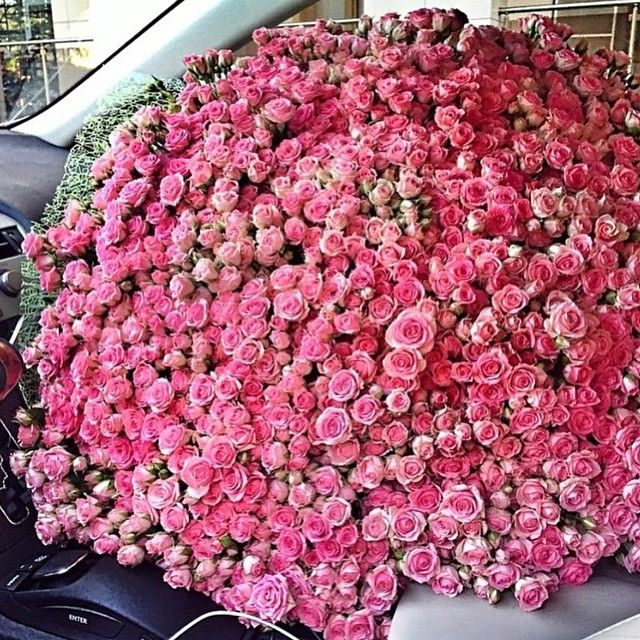35 best Flowers images on Pinterest | Flowers, Bloemen and Blossoms