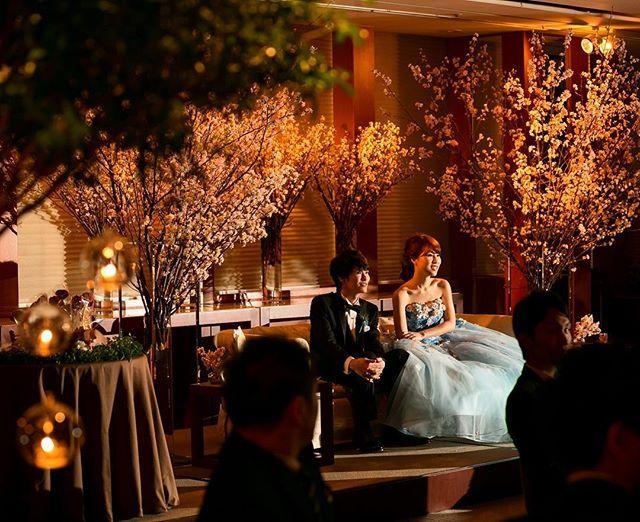 . 余興のムービーを見てるところ ドヤ顔で座ってますw . . ゲストテーブルのツリーと高砂のサクラを両方入れて 撮ってくれているお気に入り . #桂由美#katsurayumi#テラリウム#桜#ウェディング#ソファ高砂#weddingdress