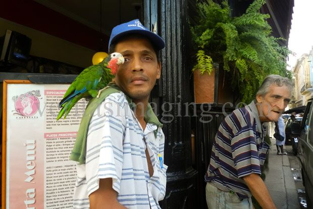Man with his parrot