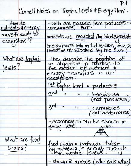 15 best images about Cornell Method – Sample Cornell Note