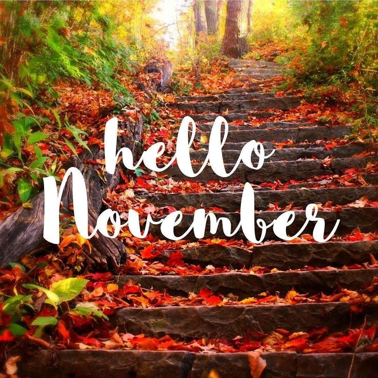 Hello, November Please, Be Good To Me ✨ #good #november #happytime