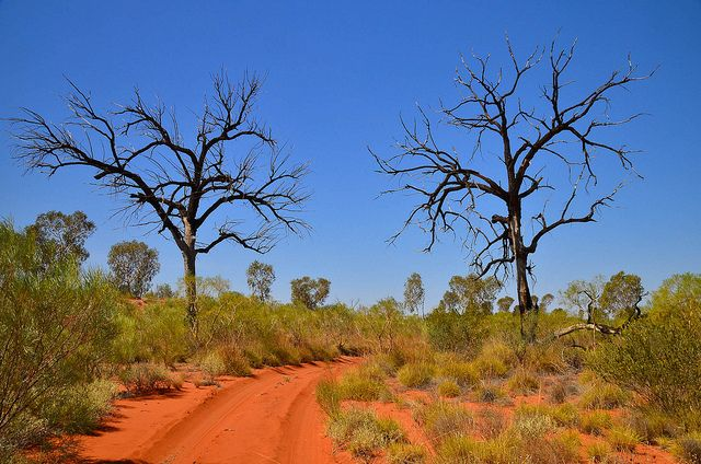 Canning Stock Route by 17 South, via Flickr