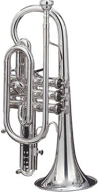 Cornet.  My instrument.  Although most people think the trumpet and cornet are different.  they arent.  The cornet is easier to play.