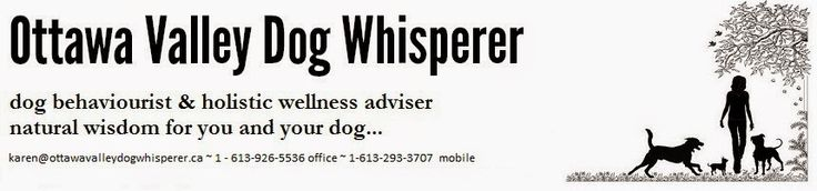Ottawa Valley Dog Whisperer : Is the Prescription Dog (Cat) Food Sold in Veterinarian's Offices Good or Bad for Your Dog (Cat)? Hill's Prescription Diet, Royal Canine Veterinary Diet, Purina Veterinary Diet, etc.