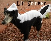 Lil' Stinker Skunk Dog Costume for Halloween custom made small 15 pound dog