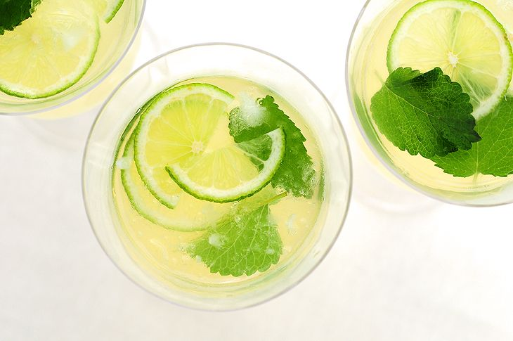 honey-lemon-balm-lemonade-liquor optional! Sounds like a possible good toddy for ailing folks