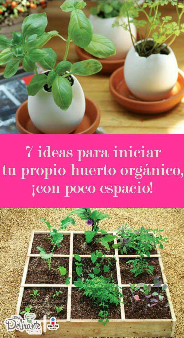 7 Ideas Para Iniciar Tu Propio Huerto Orgánico Con Poco Espacio Huerto Organico Huerto Jardín De Vegetales