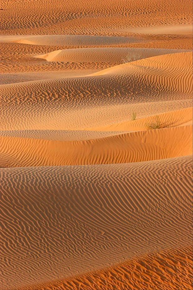 Deserto.  Fotografia: http://www.dumpaday.com