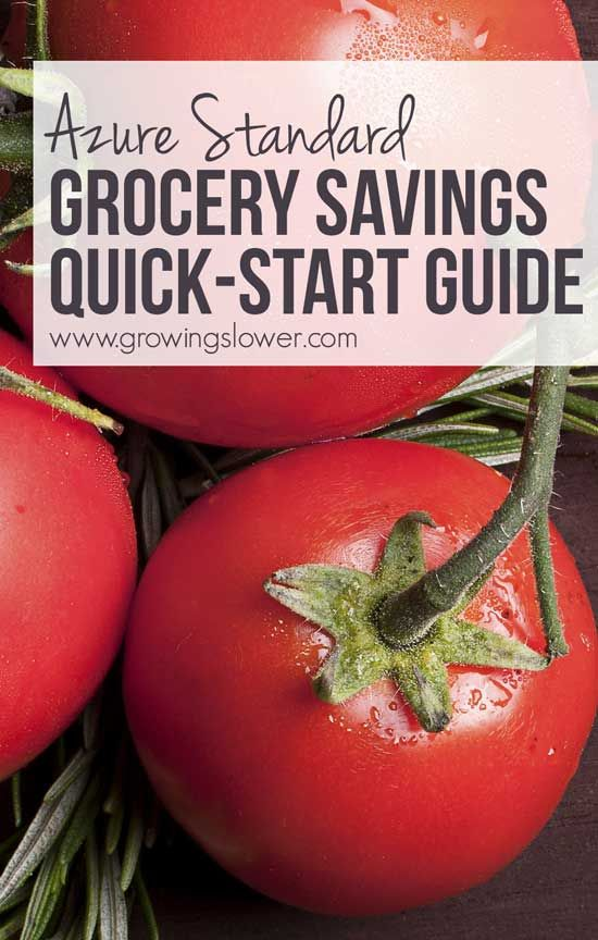 Azure Standard is one of my favorite go-to online grocery stores to save on natural and organic groceries (seriously, up to 75%!), but it can be kind of intimidating and confusing to get started. Find out everything you need to know about how to save on groceries with Azure Standard, with details on how to get started and what to buy to save big! If you're working on getting your grocery budget under control, you won't miss this!