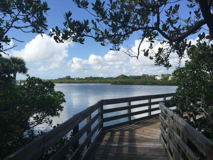 Indian Rocks Beach Nature Preserve (FL): Address, Top-Rated Attraction Reviews - TripAdvisor