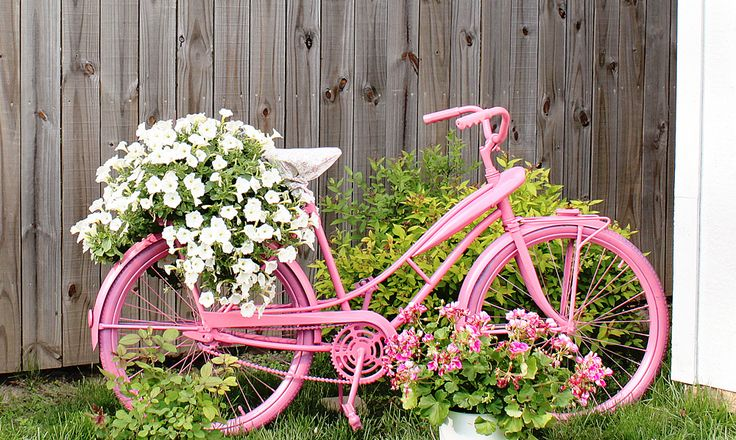 This is the bike I have, only all white!  Can't wait to load it up with flowers next spring!
