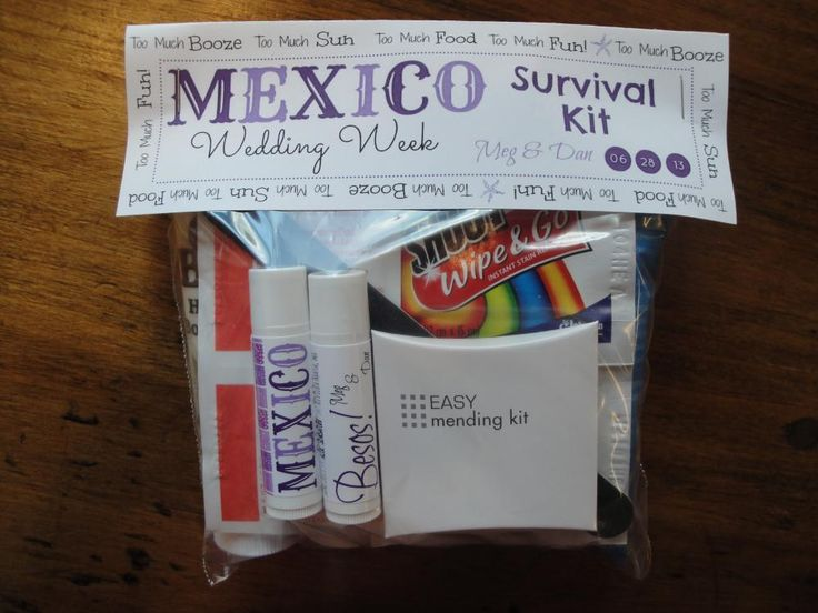 My Diy Survival Kit Label For Oot Bag With Pics And List