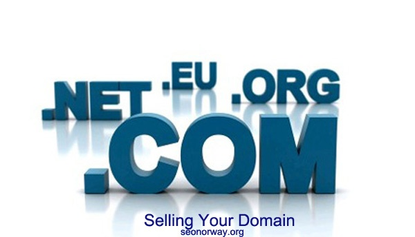 SEO Norway – How To Sell Your Dream Website Without Having a Nightmare