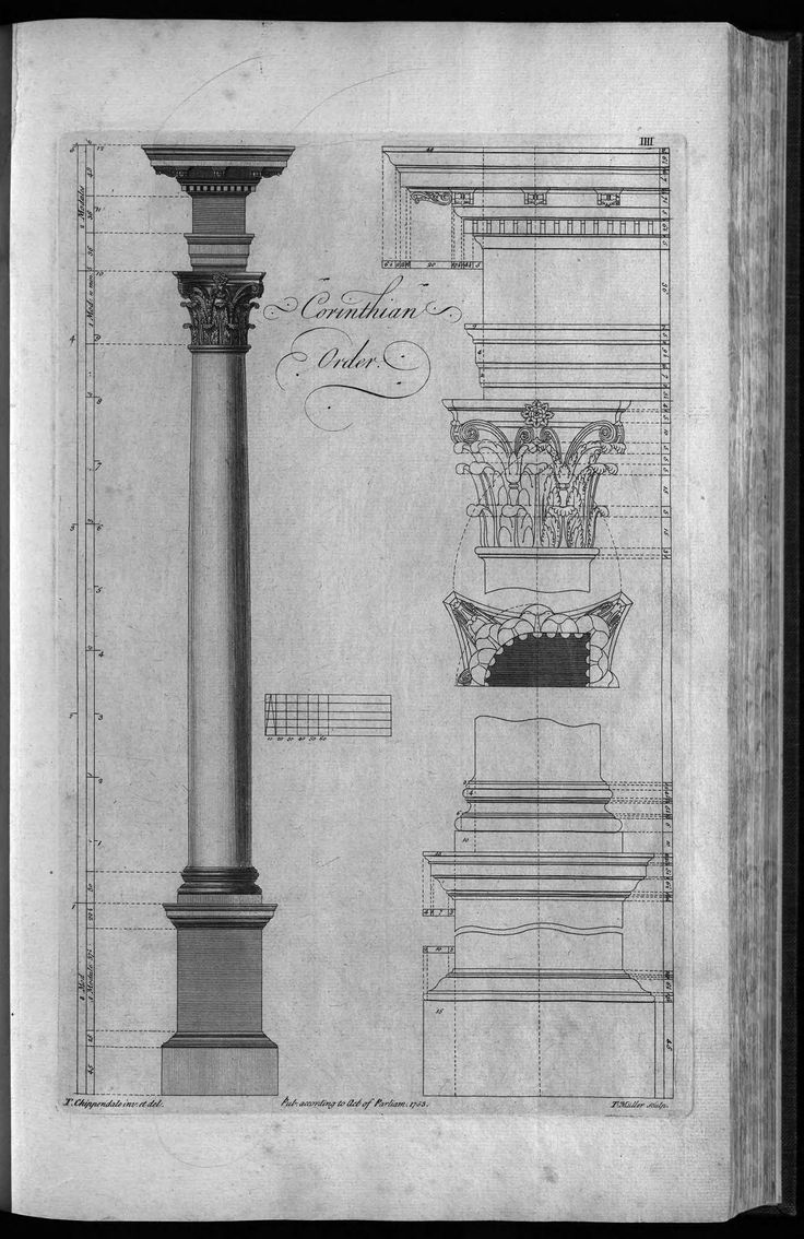 The parthenon the epitome of the doric order - The Gentleman And Cabinet Maker S Director By Thomas Chippendale 1754 Cooper Hewitt Corinthian Orderthe