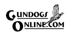 Hunting Dogs, Bird Dogs, Gun Dogs - Dog Supplies, Articles, Video Tips, Talk Radio