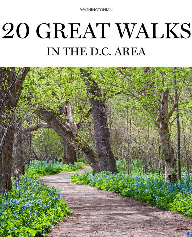 Beautiful Walks In and Around D.C. | Washingtonian