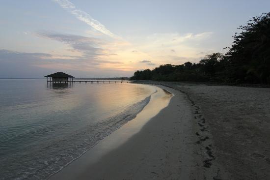 beach at Casa Cayuco, Isla Bastimentos - TripAdvisor