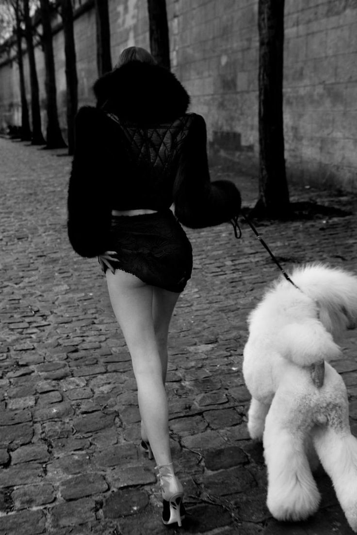 anais pouliot + standard poodle    this is an AMAZING shot. I adore it.