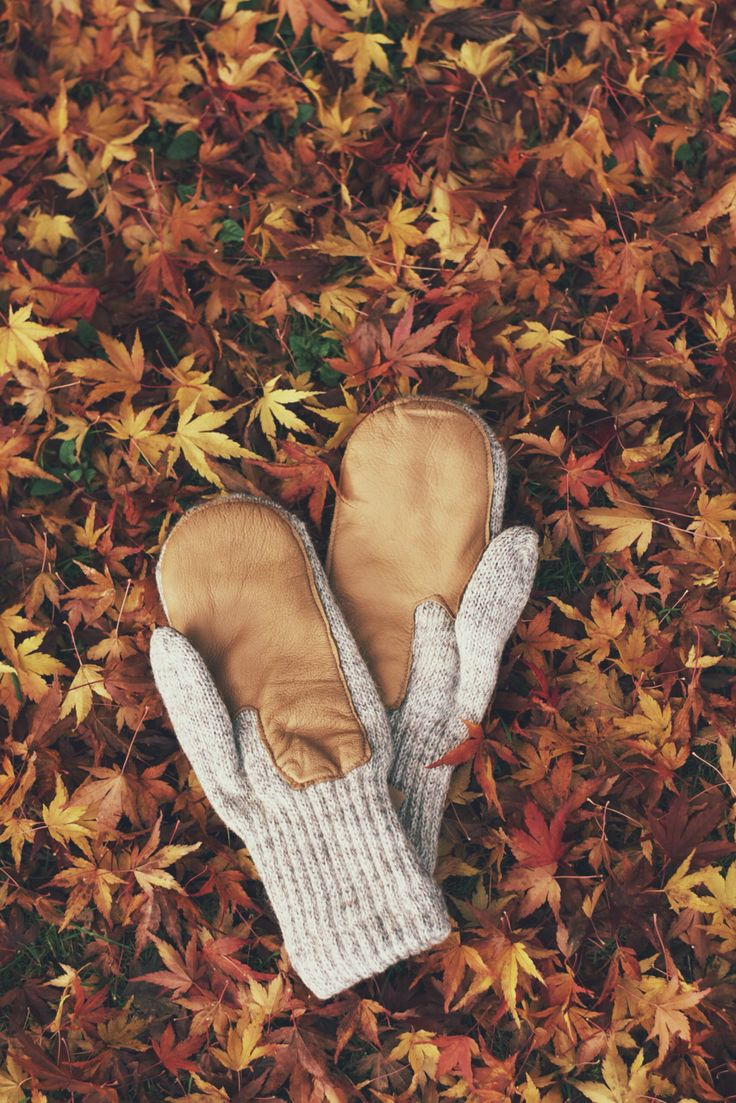 leaves down, mittens on #fall