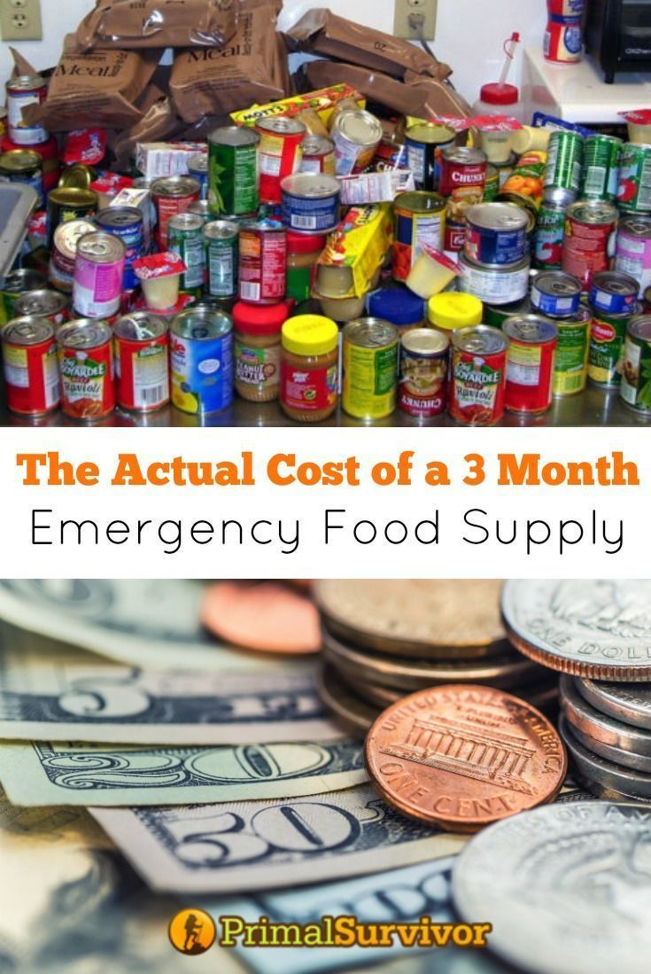 We break down the Actual Cost of a 3 Month Emergency Food Supply to help you get prepared for when SHTF and you need to Bug In.