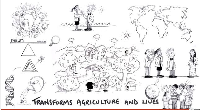 VIDEO: From the whiteboard video: (Learning together)... transforms agriculture and lives