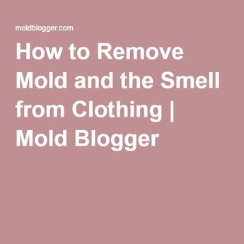 How to Remove Mold and the Smell from Clothing | Mold Blogger