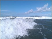 Spot Rangitoto in the distance! Captured with waterproof phone case.