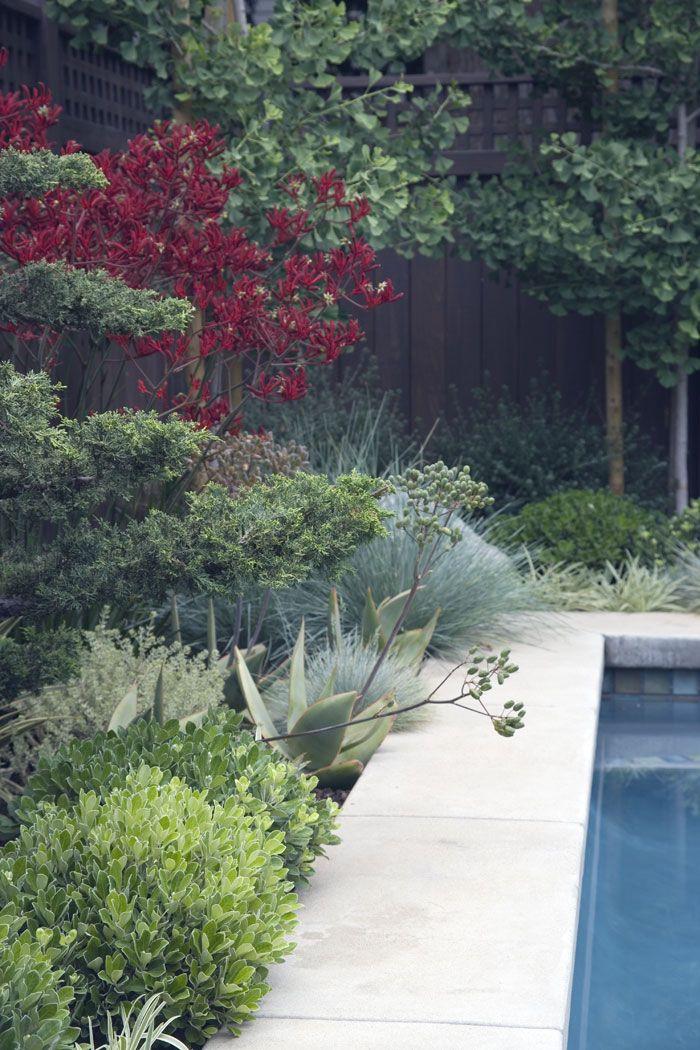Gabriela Yariv Landscape Design, LAX
