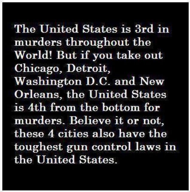17 Best Images About Law Enforcement Gun Control On: 17 Best Images About Stupid Democrat Ideology On Pinterest