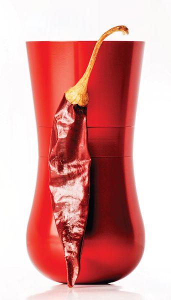 Paprikum spice grinder http://www.magma.hu/muveszek.php?id=161