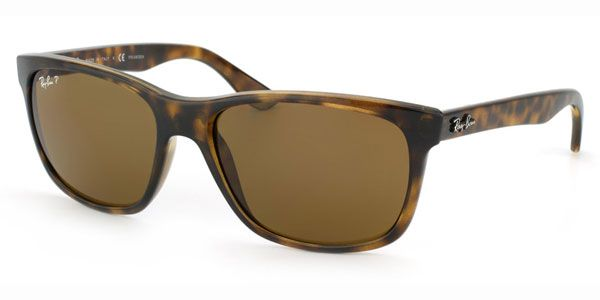 Ray Ban RB4181 Polarized 710/83 Sun Glasses | Discount Ray Ban Sunglasses Online for Men and Women