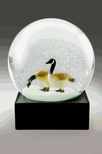 289 Snow Globe Images Pinterest Globes Music Boxes Canada Geese