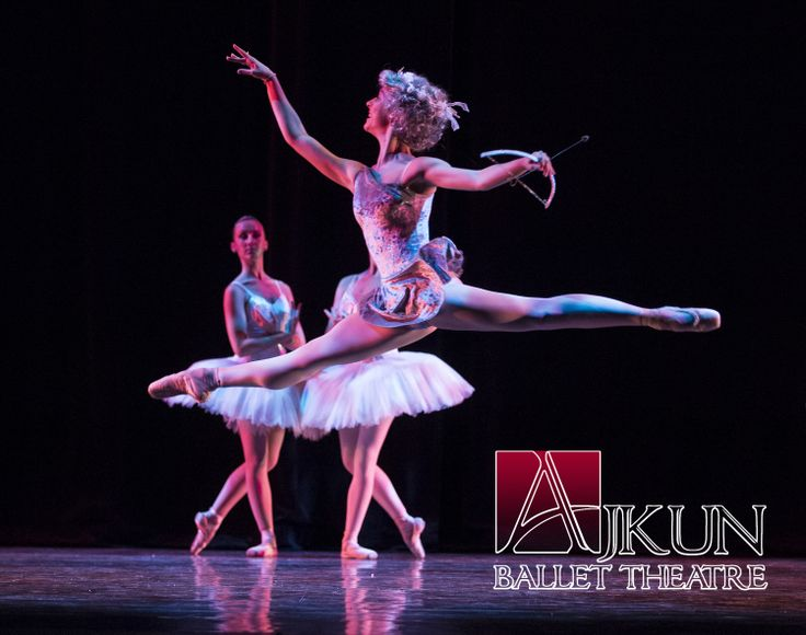 Bluebird Ballet Variation. Learn ballet at home - The ...