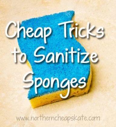 'Cheap Tricks to Sanitize Sponges...!' (via Northern Cheapskate)