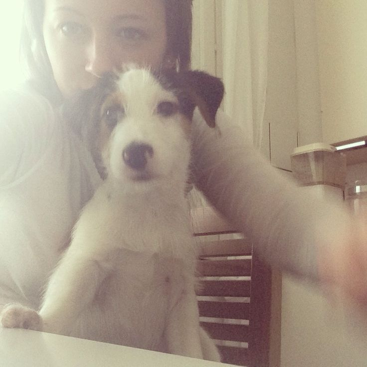 Me and my boy❤️ #jackrussell