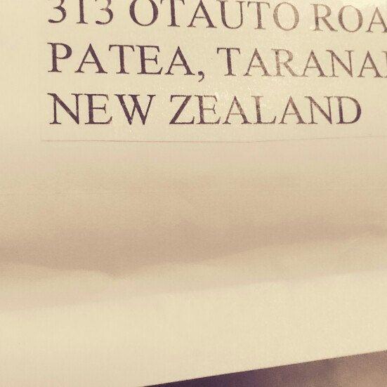 Hello New Zealand! Happy new life dear couple hedgehogs <3