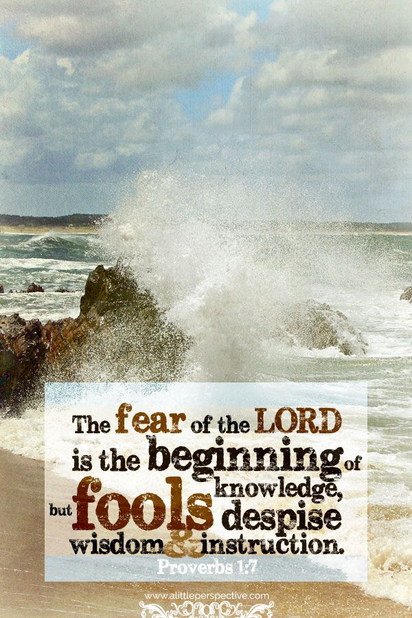The fear of the LORD is the beginning of knowledge; but fools despise wisdom and instruction. Pro 1:7 <3