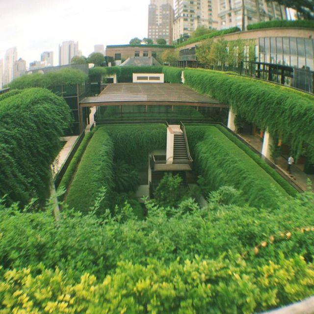 Shopping Cidade Jardim em São Paulo, SP  Mais uma linda foto da Camilla Napolitano