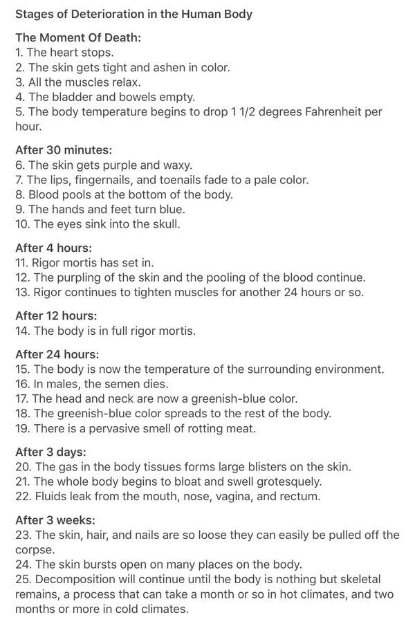 Stages of Deterioration in the Human Body. FULL.