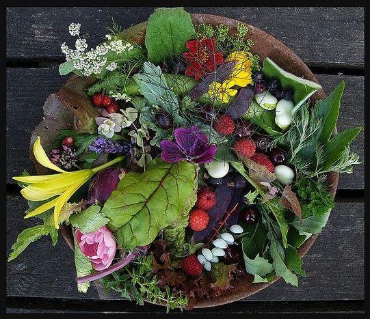 Готовим дома, местная еда, рецепты: 8 сорняков для вкусного салата (и пользы организма)