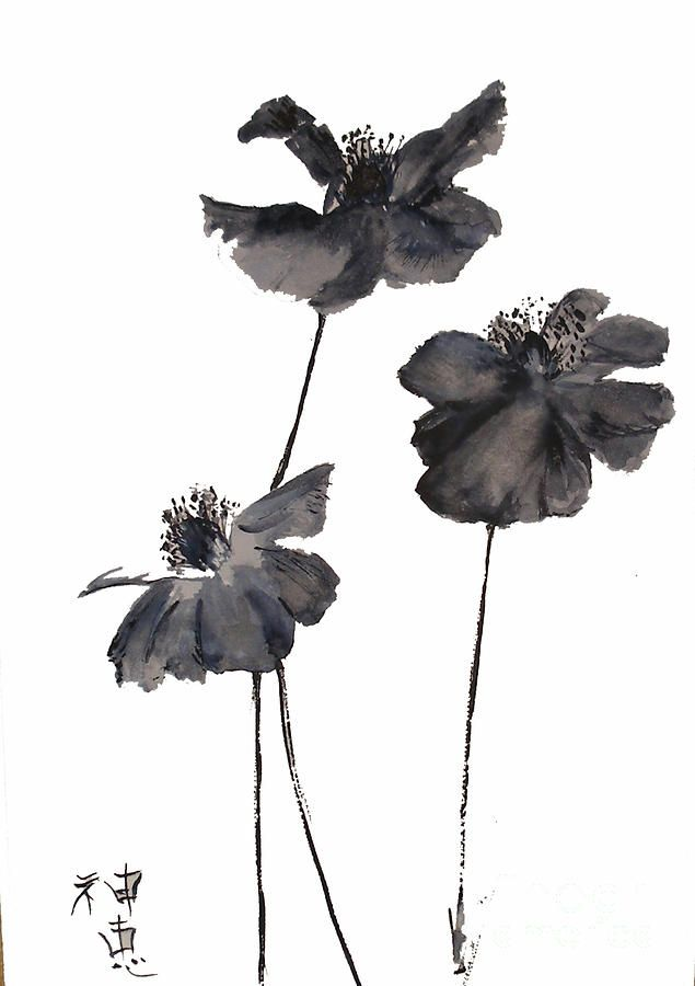 Google Image Result for http://images.fineartamerica.com/images-medium-large/sumi-e-poppies-sibby-.jpg