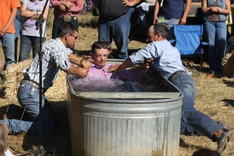 Cattle water trough baptism