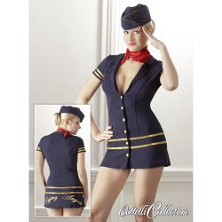 stewardess dress...next halloween outfit?