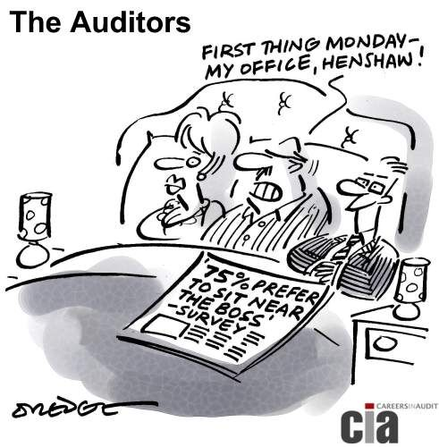 34 Best Images About Audit Cartoons On Pinterest