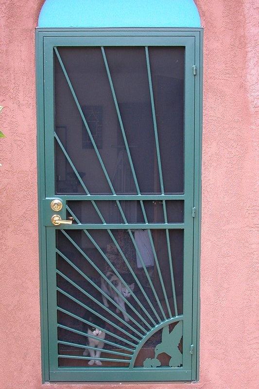 54 best Burglar bars images on Pinterest | Entrance doors, Front ...