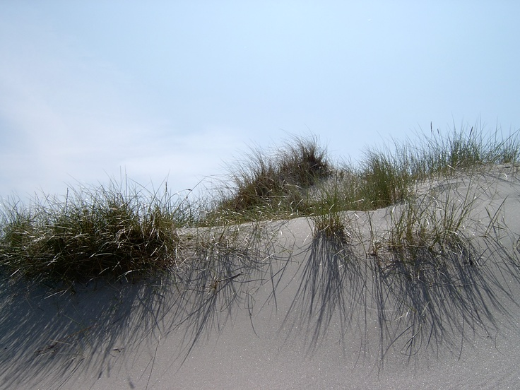 Sanddyner på Jæren