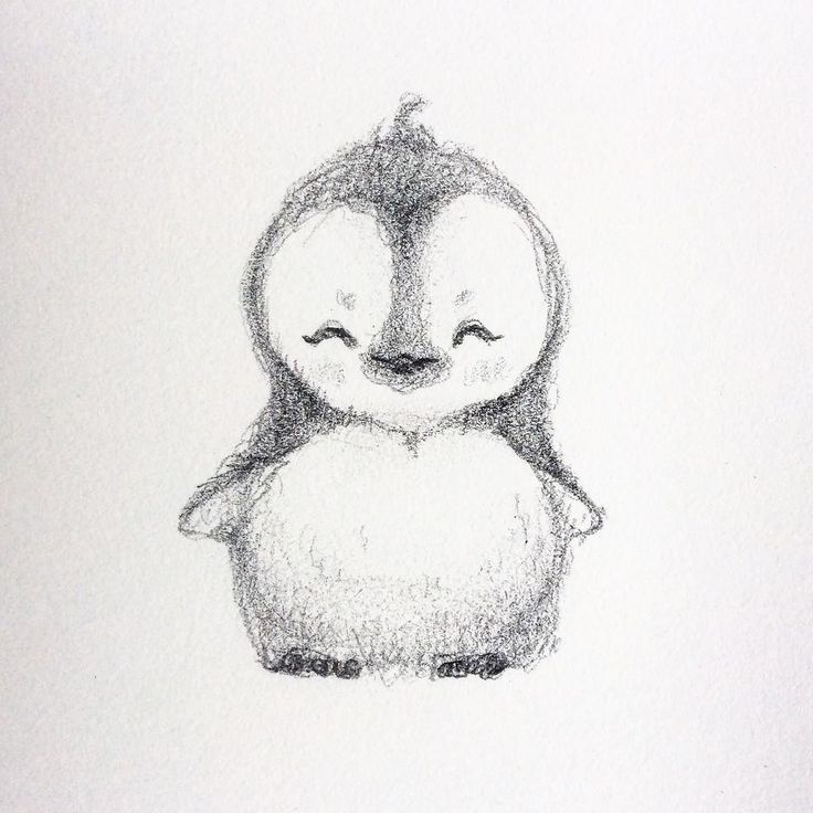 the 25 best penguin drawing ideas on pinterest penguin
