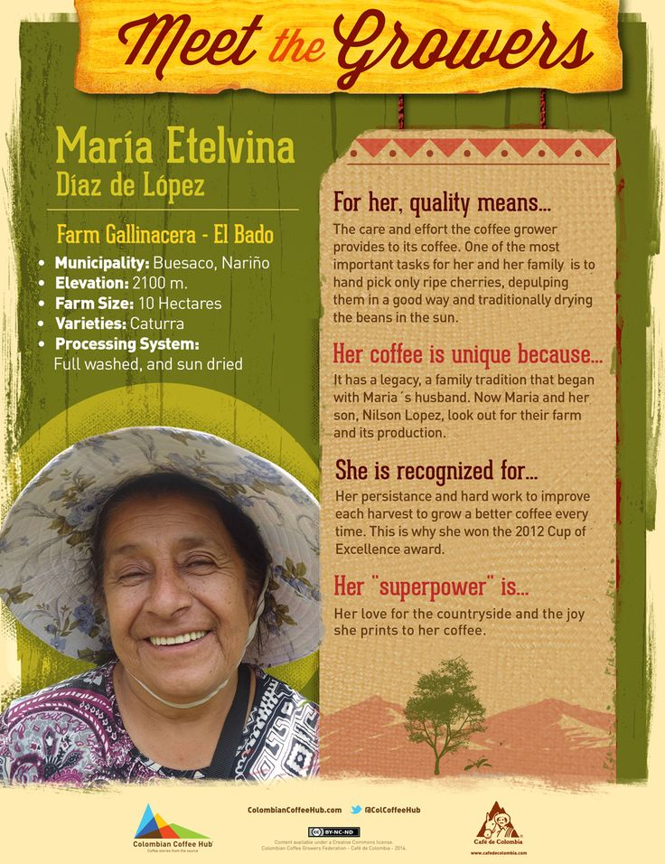 From Buesaco, Nariño where sunlight conditions  and rich volcanic soils favors coffee growing, here comes María Etelvina Díaz de López. Meet her http://colombiancoffeehub.com/origin/meet-the-growers-%E2%80%93-maria-etelvina-diaz_1467300/