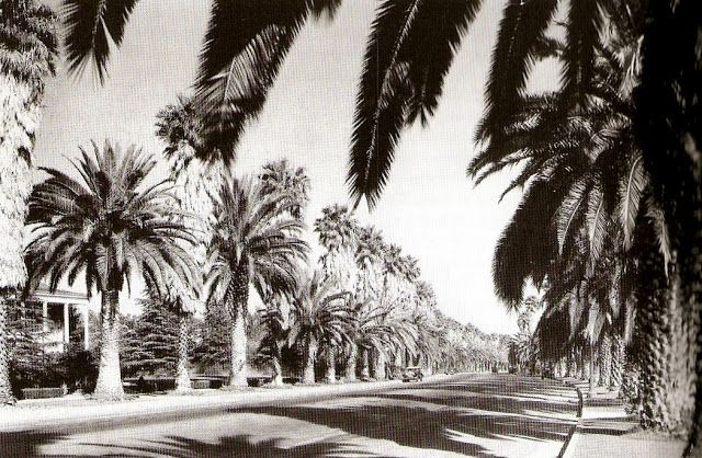 Beverly Drive, 1928.