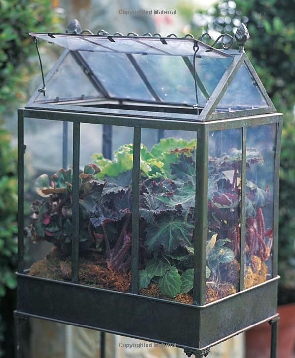 1000 Images About Terrarium Container On Pinterest Terrarium Ideas Better Homes And Gardens